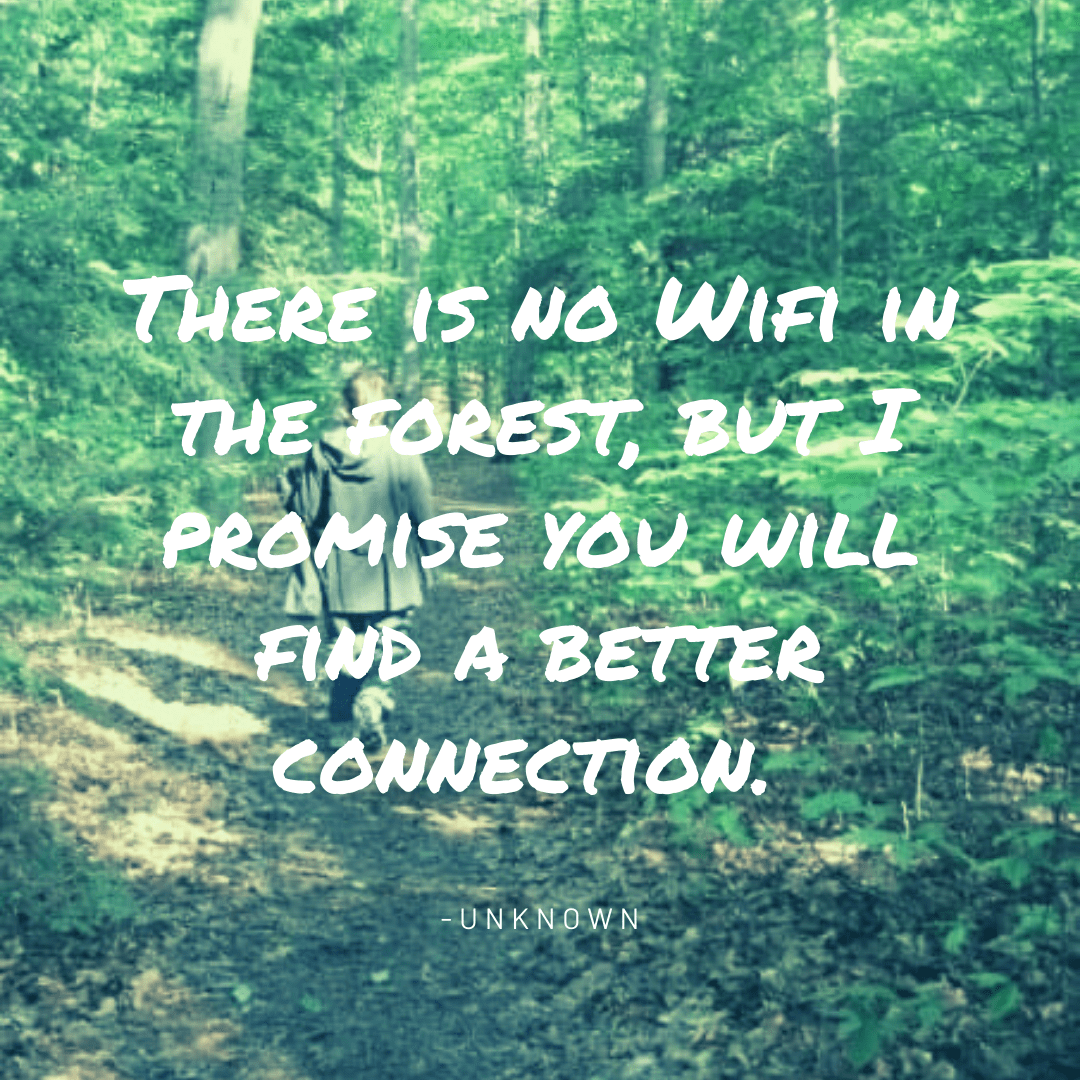 """Quote over the image of a person walking down a lush forest. The quote says """"there is no wifi in the forest, but i promise you will find a better connection."""" You can find that connection at Camp Therapyology. The day camp for teens, kids, and young adults in Michigan to provide social connection and emotional support during lockdown. Join us between December 14th and December 30th on Mondays and Wednesdays. This is both an online camp, and in person day camp."""